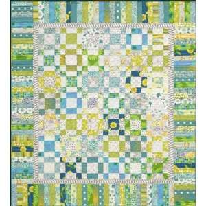 Spring Fling Quilt Pattern By Alex Anderson Arts, Crafts & Sewing