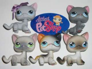 LPS RETIRED SHORT HAIR KITTY CAT LOT~#74 106 5 125 246~Littlest Pet