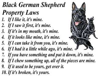 PARCHMENT PRINT BLACK GERMAN SHEPHERD DOG PROPERTY LAW