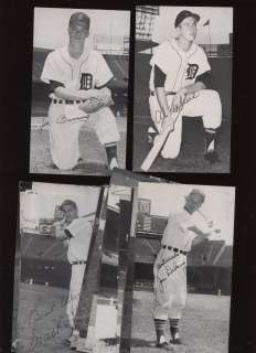1950s Baseball Player Postcards 22 Different Detroit Tigers