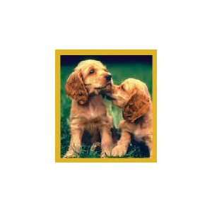 New Magnetic Bookmark Cocker Spaniel Puppies High Quality