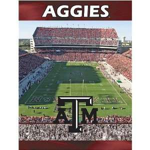 Texas A&M Aggies TAMU NCAA 550 Piece Jigsaw Puzzle: Sports