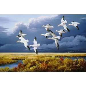 Maynard Reece   Dark Sky Snow Geese Artists Proof Home