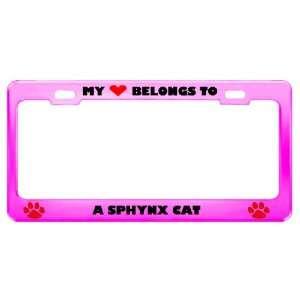 Sphynx Cat Pet Pink Metal License Plate Frame Tag Holder