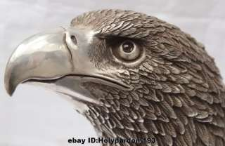 Ferocious Chinese Silver Arabia Hawk Eagle Bird Head Bust Figures