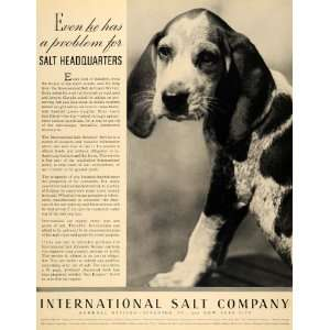 Salt Hunting Beagle Dog Scranton   Original Print Ad: Home & Kitchen
