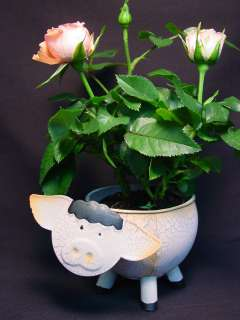 Handmade Pink Pig Piglet Planter Flower Pot Metal Figurine Small Farm