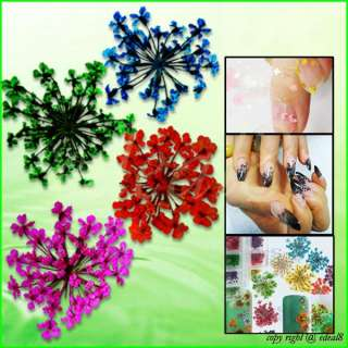 Colorful Dried Flower Acrylic Nail Art Tips Decorations