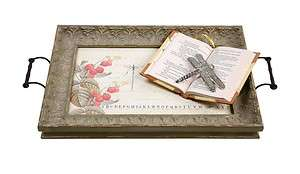 Shabby Chic Style~Sage Green~Large Dragonfly Tray/Metal Handles~Glass