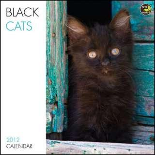 Black Cats 2012 Wall Calendar