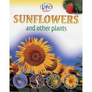 and Other Plants (Life Cycles) (9781841383095): Sally Morgan: Books