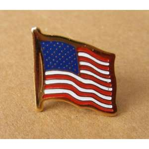 American Flag Pin Button Badge   Great for Flag Day, 4th