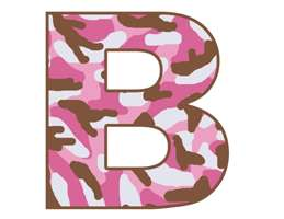 PINK BROWN CAMO BABY NURSERY WALL BORDER STICKERS DECAL