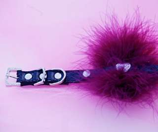 Black Leather Dog Collar with Purple feather